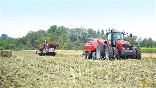Corn stalk baling demo-– Visitors can see large square and round balers in action. one of many equipment demonstations