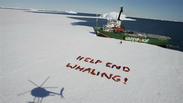2008 photo -originally an anti-nuclear peace movement, Greenpeace is now more focussed on the environment and ecology