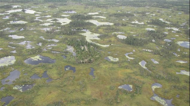 Permafrost underlies between 40 and 50 per cent of Canada's land mass.