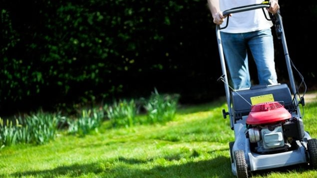 Canadians who bought a lawnmower between 1994 and 2012 may be eleigible for money as a result of a lawsuit over an alleged price fixing conspiracy