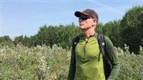 Battre les sentiers : La nature inspirante de White Butte