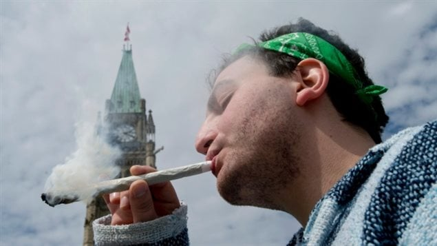 A phone survey conducted by a different pollling firm, Ipsos Reid, and taken between Jan. 30 and Feb. 7, 2014, suggested that 70 per cent of 3,000 Canadians polled want to see pot possession either legalized or decriminalized