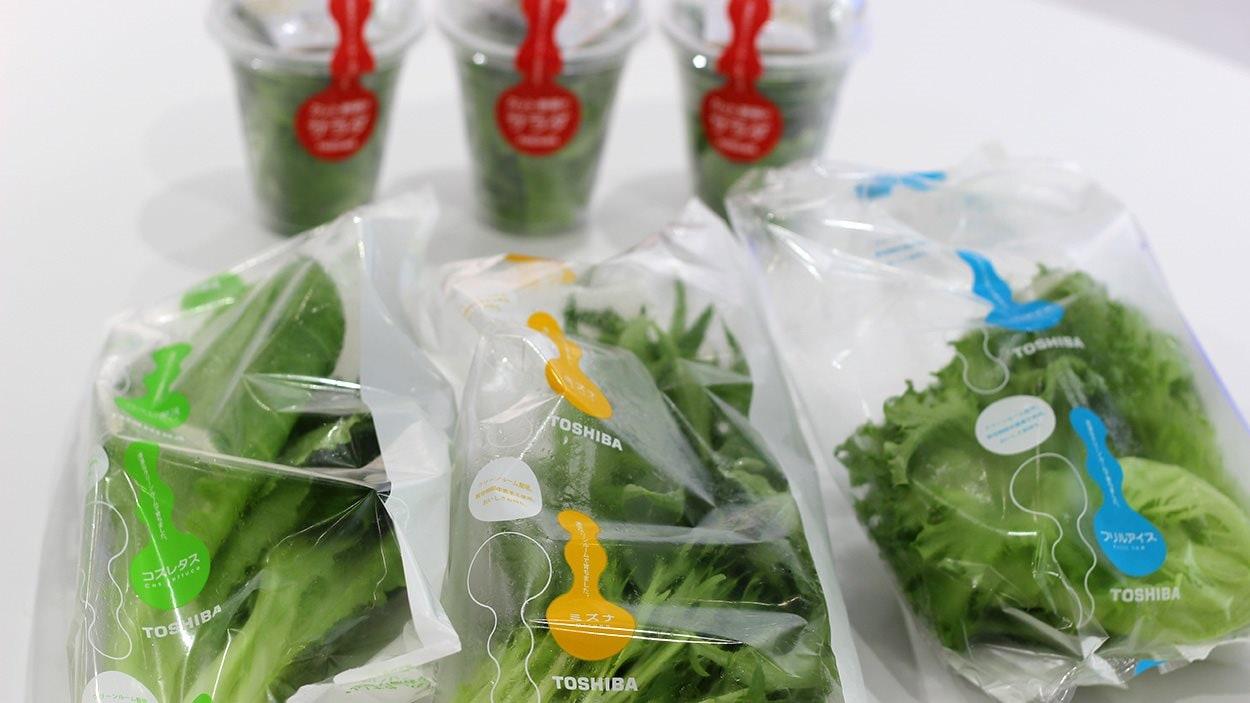 Les légumes poussent plus rapidement que des laitues conventionnelles, et ils se conservent plus longtemps, parce qu'ils sont dans un environnement sans bactérie.