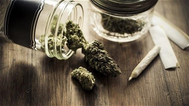 Divers produits à base de cannabis