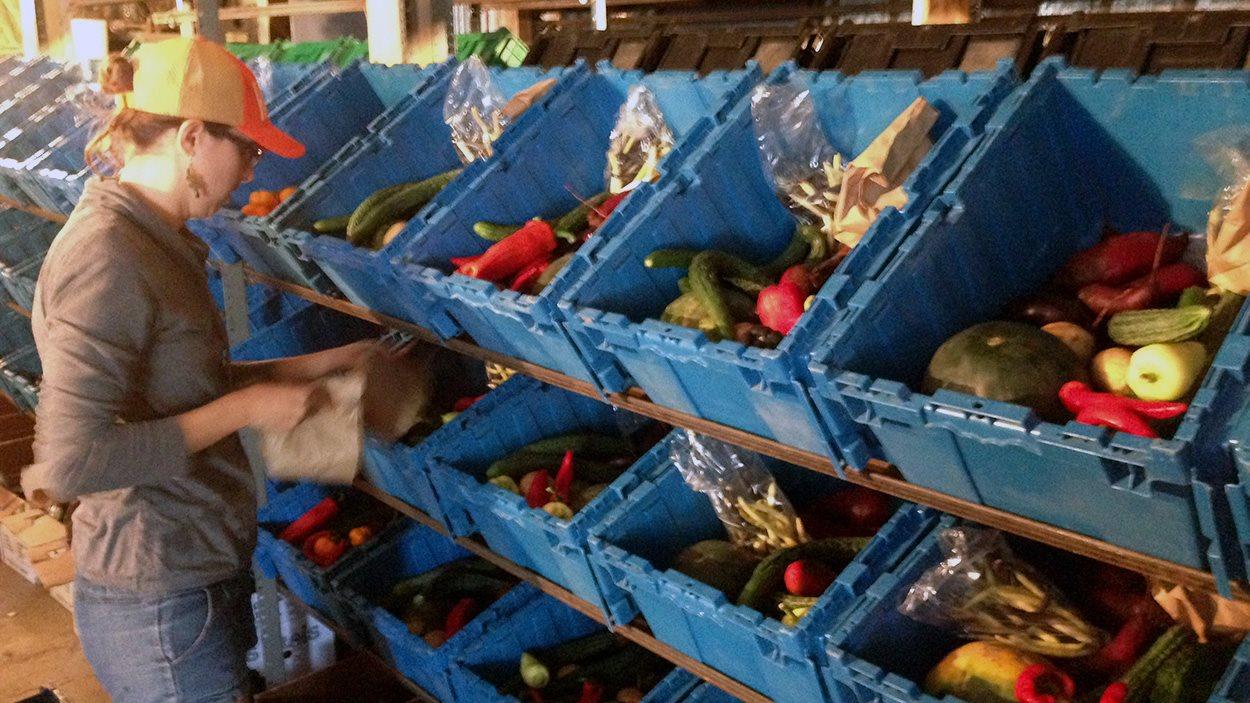 Remplissage des paniers pour la livraison à Montréal