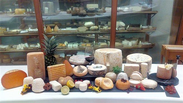 La variété de fromages offerts par Poncelet