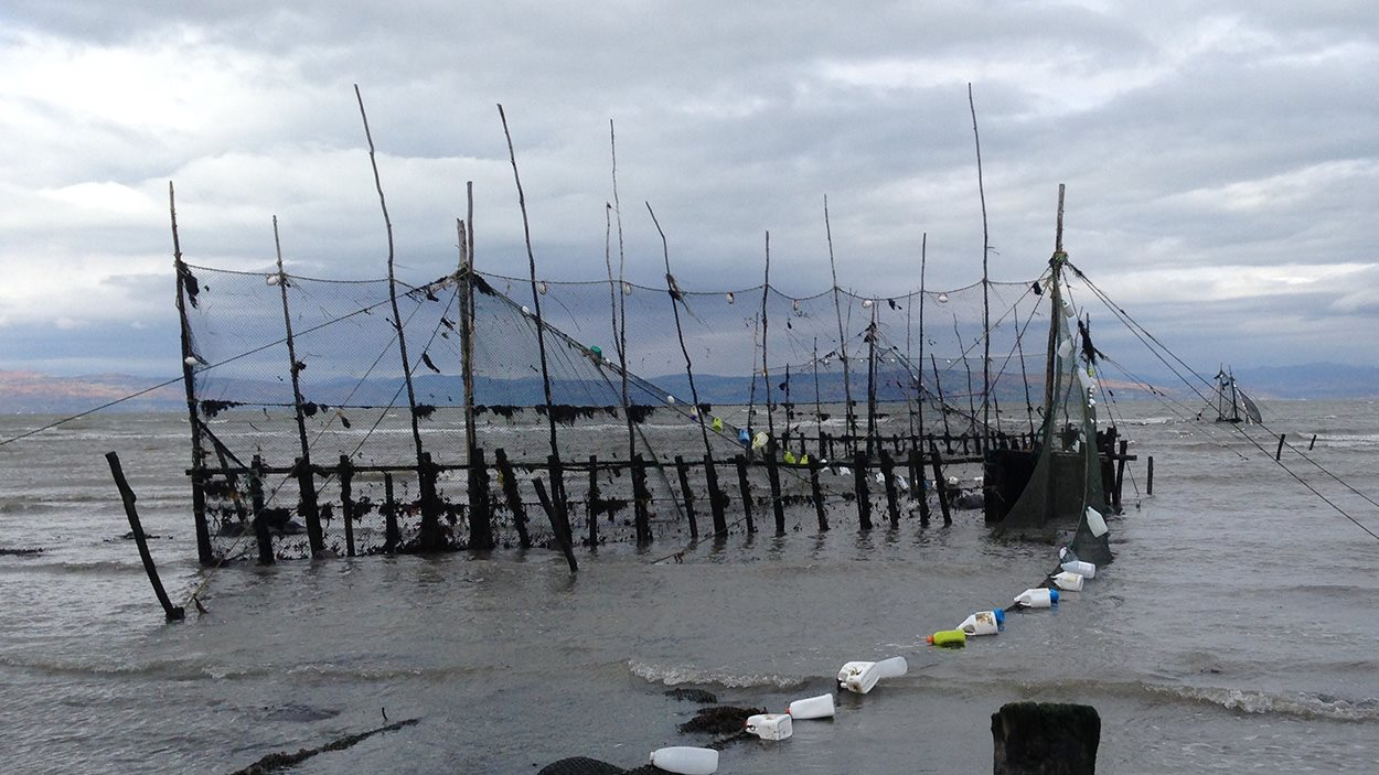 Installation de la pêche à fascines