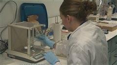 Une scientifique au travail dans un laboratoire de l'ISMER