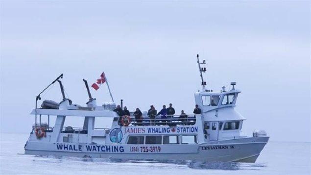Le Centre conjoint de coordination de sauvetage de Victoria a confirmé que le bateau qui a coulé au large de Tofino est le MV Leviathan II.