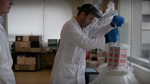 With the new discovery other scientists were able to create a new drub combining standard cancer treatment toxins with the malaria protein which directly targets the unique sugar molecular produced by rapidly growing cancer cells and not by helathy cells.