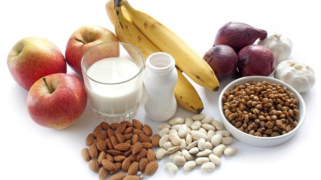 effet des probiotiques