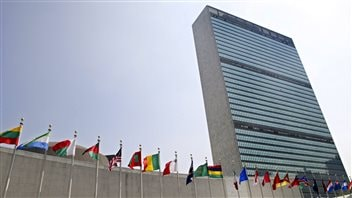 Canada lost a bid for a temporary seat on the UN Security Council in 2010. This was seen as a result of the previous government's disdain for the UN.
