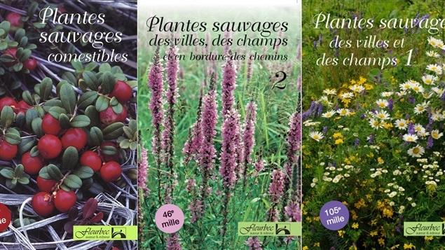 Couverture de quelques-uns des guides publiés par le Groupe Fleurbec, cofondé par Gisèle Lamoureux