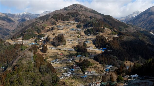 Les plateaux cultivés dans la région de la vallée d'Iya, sur l'île de Shikoku au Japon