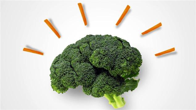 L'effet de la nutrition sur la santé cérébrale