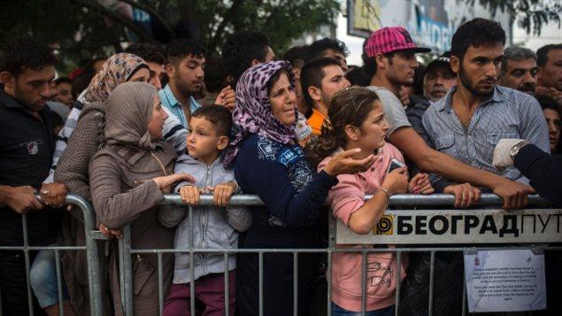 Des réfugiés syriens font la queue à un poste d'enregistrement en Serbie.