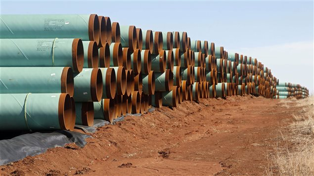 Miles of pipe for the rejected Canada-to-Texas Keystone XL pipeline are stacked in a field near Ripley, Okla., In this Feb. 1, 2012 file photo.