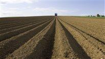 Les agriculteurs sauront-ils s'adapter aux changements climatiques?