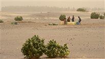 Des milliards pour aider l'Afrique à affronter les changements climatiques