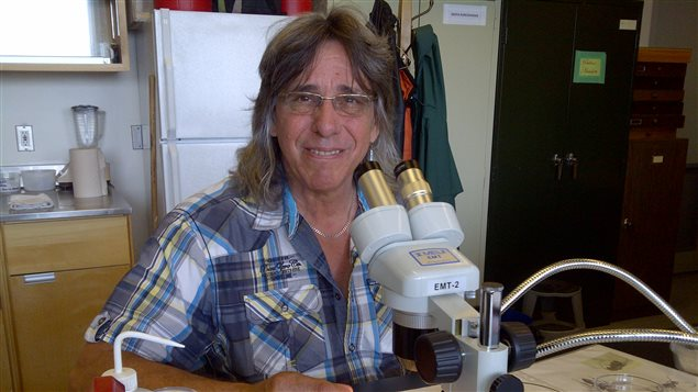 Jacques Régnière, expert en dendroctone du pin à Ressources naturelles Canada.