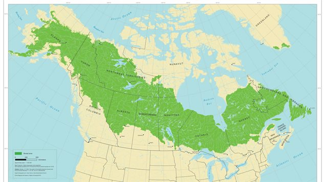 Broeal Forest of Alaska and Canada