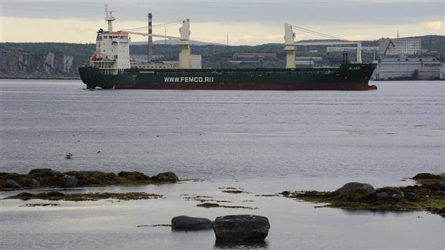 The Russian-operated ship Alaed is moored outside the northern port of Murmansk June 23, 2012.