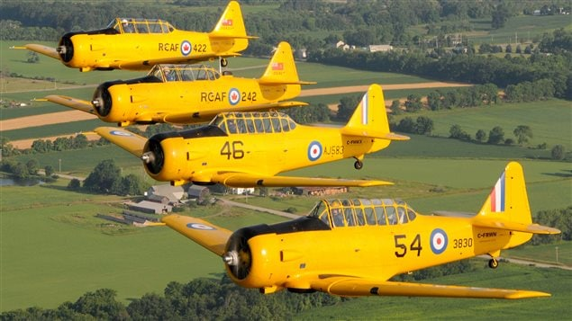 Canadian Harvard Aircraft Association. Restored Harvard aircraft marked as RCAF planes in the in the colours of the BCATP training programme. The Harvards were used as advanced trainers for pilots who would go one to fly front line fighters like hurricanes and Spitfires
