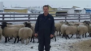 Phil Kolodychuk, Alberta sheep rancher and Chairman of the Canadian Sheep Federation