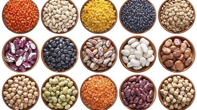 L'année internationale des légumineuses, décrétée par Organisation des Nations Unies pour l'alimentation et l'agriculture (FAO)