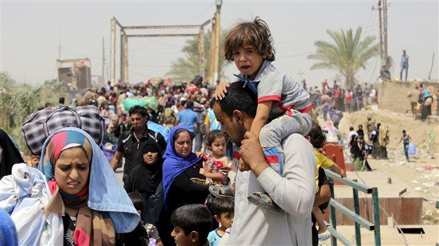 Des Iraquiens sunnites fuient la ville de Ramadi, passée sous le contrôle du groupe armé État islamique, en mai 2015.