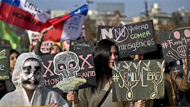 Une manifestation contre Monsato à Santiago, au Chili