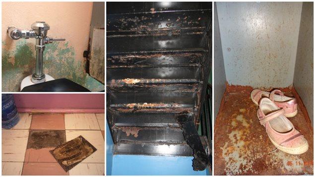 Des professeurs nous ont fait parvenir des images qui témoignent de l'état de décrépitude des écoles montréalaises.