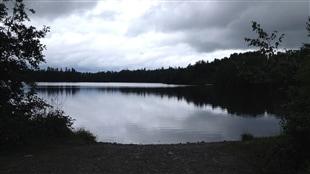 Les lacs de la planète manquent d'air