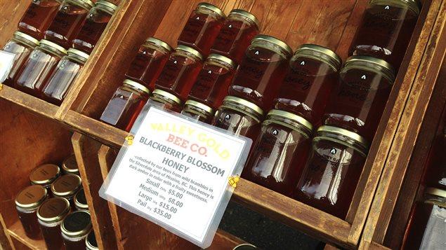 La vente de miel local a doublé en Colombie-Britannique en 2015