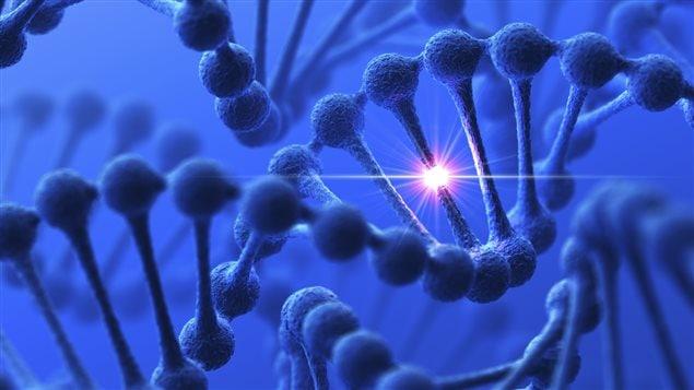 La nouvelle loi sur la discrimination génétique doit entrer en vigueur dans les prochaines semaines.