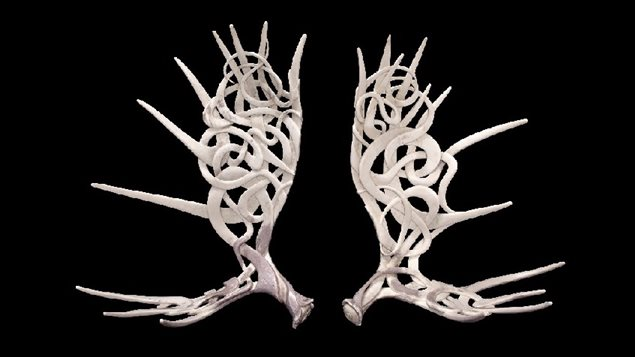 Shane Wilson's beautiful and intricately carved moose antlers called Borealis And Oreithyia