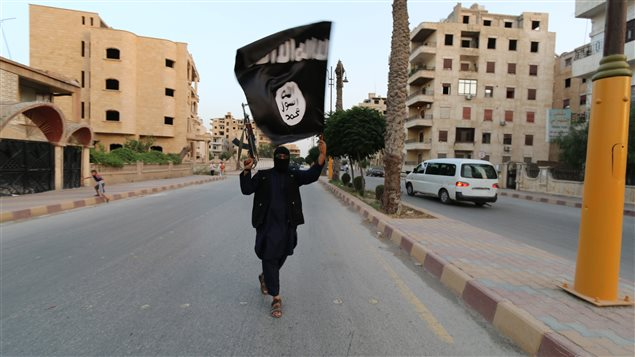 A member loyal to the Islamic State in Iraq and the Levant (ISIL), also known as ISIS, waves an ISIL flag in Raqqa June 29, 2014.