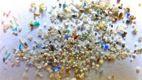 Des microbilles de plastiquesCrédit photo : 5Gyres
