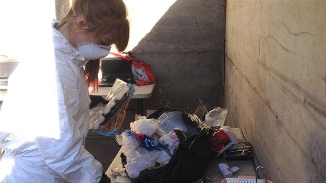 Une inspectrice en environnement trie le contenu des sacs de poubelles