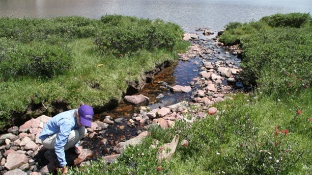 WWF-Canada says Canada needs a standardized national freshwater monitoring system.