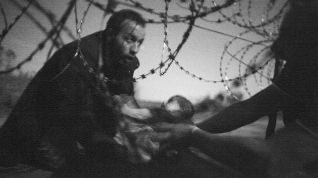 The winning photo shows a man passing a baby through a fence at the Hungarian-Serbian border on August 28, 2015.
