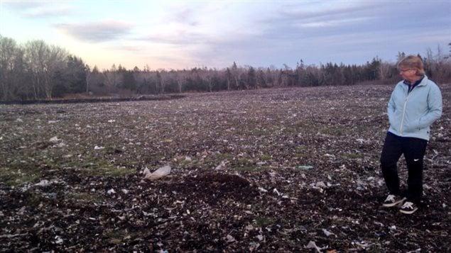 Des déchets près du lac George à Yarmouth en Nouvelle-Écosse