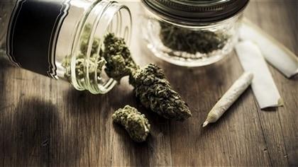 Des vétérans s'inquiètent de la révision du programme de remboursement du cannabis médicinal