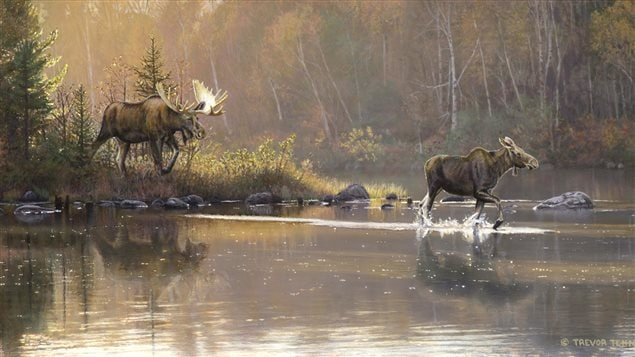 """His painting """"Shoreline Retreat"""" won Trevor Tennant Artist of the Year 2016 in the contest which raises money to preserve wetlands."""