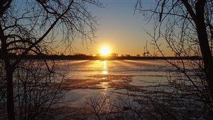 Montréal l'hiver