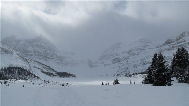 La variation dans les couches de neige détermine les risques d'avalanche en montagne.