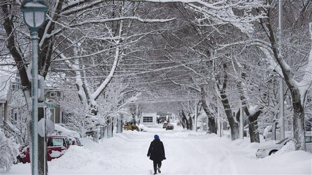 الثلوج تغطي الطرقات