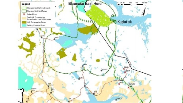 The Bluenose East caribou herd range extends deep into the Northwest Territory (dark green line), but the calving ground are entirely in Nunavut Territory (light green area).