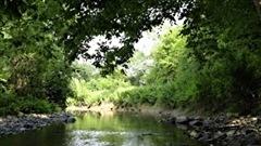Clin d'œil parleSessions d'information sur l'eau potable L'Association pour la protection de l'environnement du Lac St-Charles et des marais du Nord participera à des sessions d'information pour les citoyens des municipalités de la couronne nord de Québec au sujet de leurs sources d'eau potable. Mélanie Deslongchamps est directrice de l'APEL.
