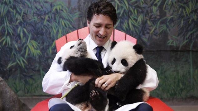 Le premier ministre Justin Trudeau cajole les bébés pandas du Zoo de Toronto le 7 mars.